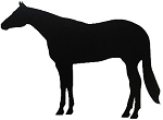 Halter Horse Side View Reflective Decal