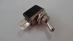 Toggle Switch, 2 Position w/12 VDC, 10 Amp